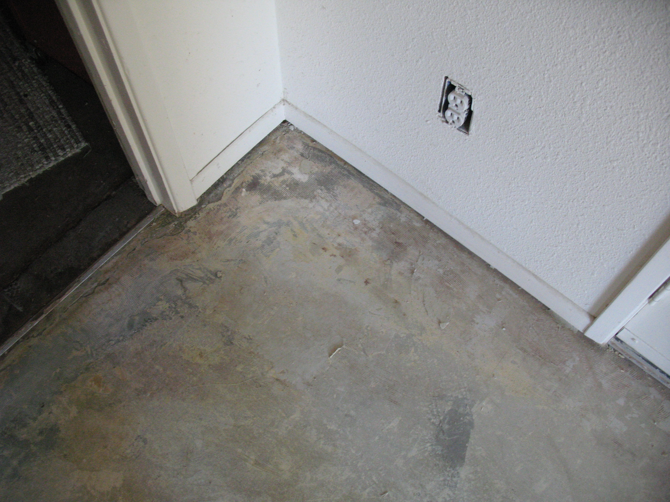 Bathroom Floor Black Mold : Mold under tile pictures hot pantyhose